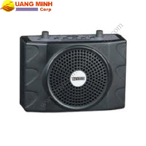 Máy trợ giảng cao cấp Auvisys AM-252